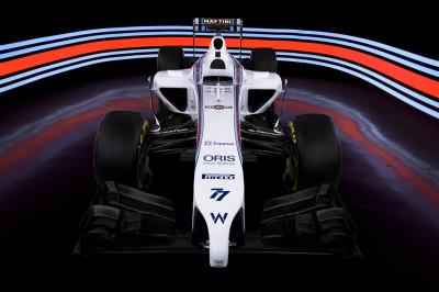 Williams Mercedes FW36 Image 1