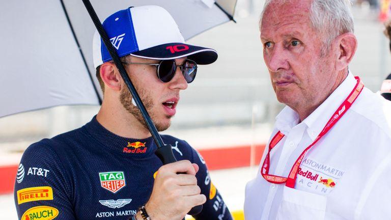 "F1 | Marko: ""Gasly in Red Bull ha fallito"""
